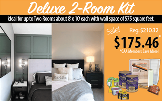 Deluxe 2-Room Paint Kit
