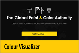 Colour Visualizer - PRO