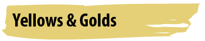 Most Popular Yellow and Gold Paint Colours