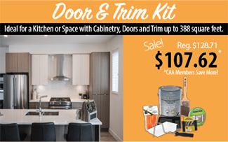 Door and Trim Paint Kit